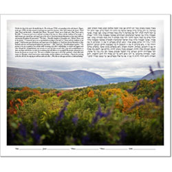 """Your Photo"" Ketubah Example #19"