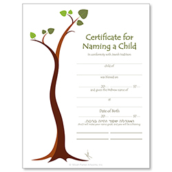 Child Naming Jewish Life Cycle Certificate