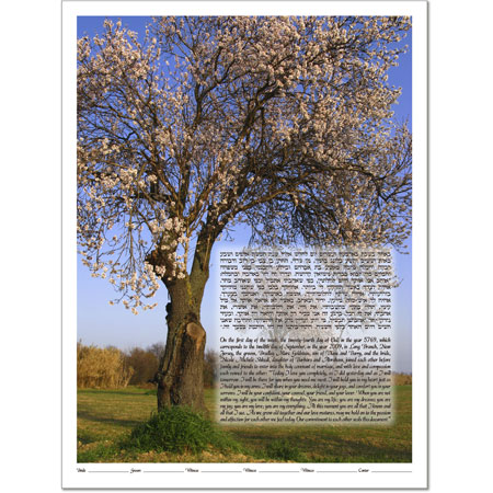 Your Photo Ketubah Example 20