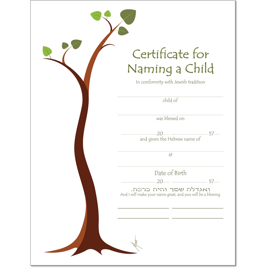 Child Naming  Baby Certificate Maker
